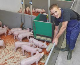 t.b.v. Vion- Goodfarmingstar website Reportage bij van Santvoort te Nuland Fotograaf:Van Assendelft Fotografie