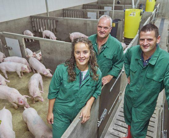 t.b.v. Vion- Goodfarmingstar website Reportage bij Michels te Heide. Fotograaf:Van Assendelft Fotografie